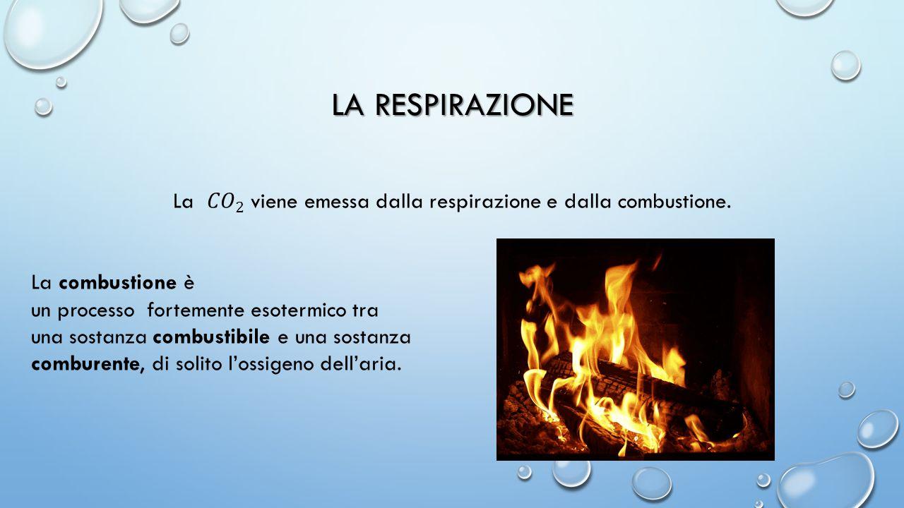 La 𝐶𝑂 2 viene emessa dalla respirazione e dalla combustione.
