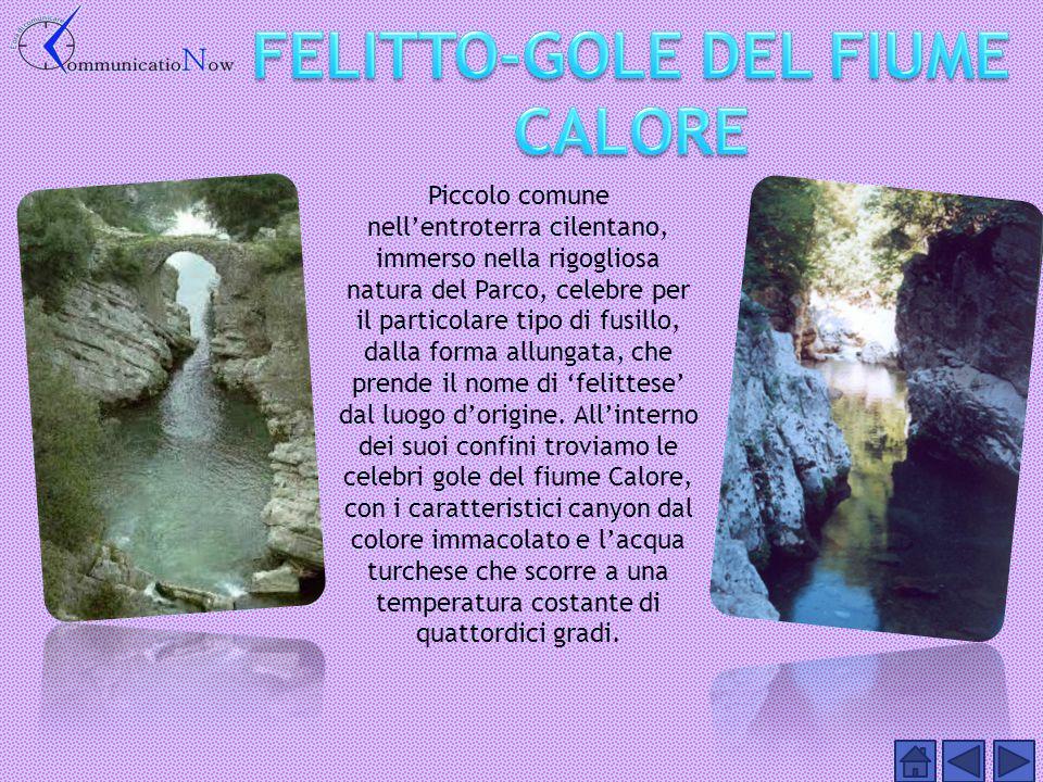 FELITTO-GOLE DEL FIUME CALORE
