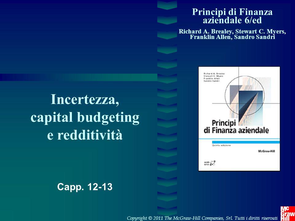 Incertezza, capital budgeting e redditività