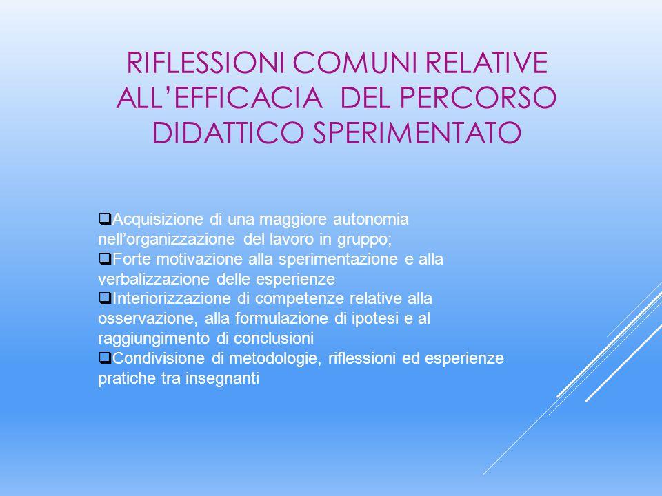RIFLESSIONI COMUNI RELATIVE ALL'EFFICACIA DEL PERCORSO DIDATTICO SPERIMENTATO
