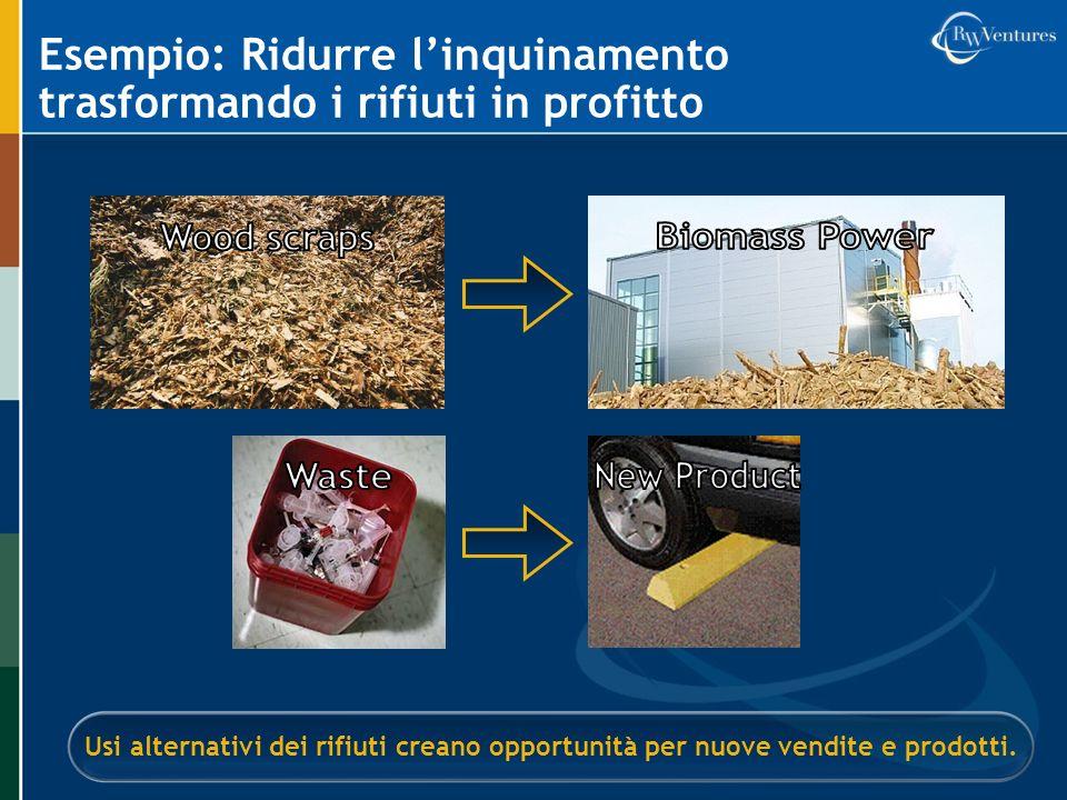 Esempio: Ridurre l'inquinamento trasformando i rifiuti in profitto