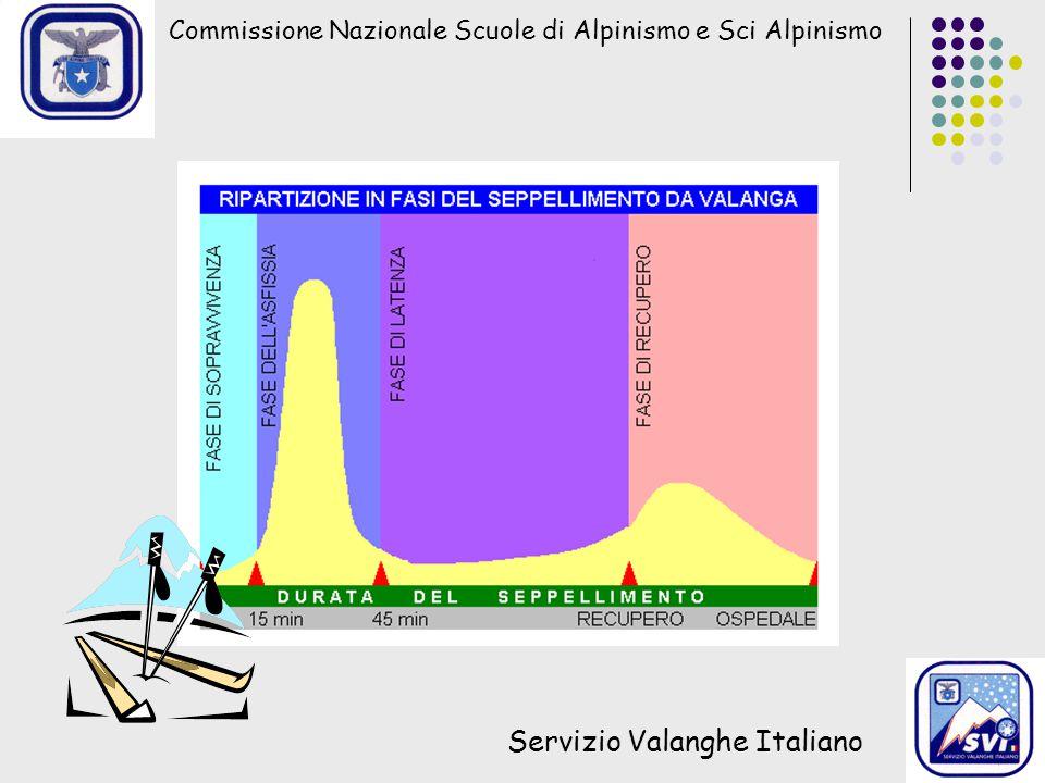 Servizio Valanghe Italiano