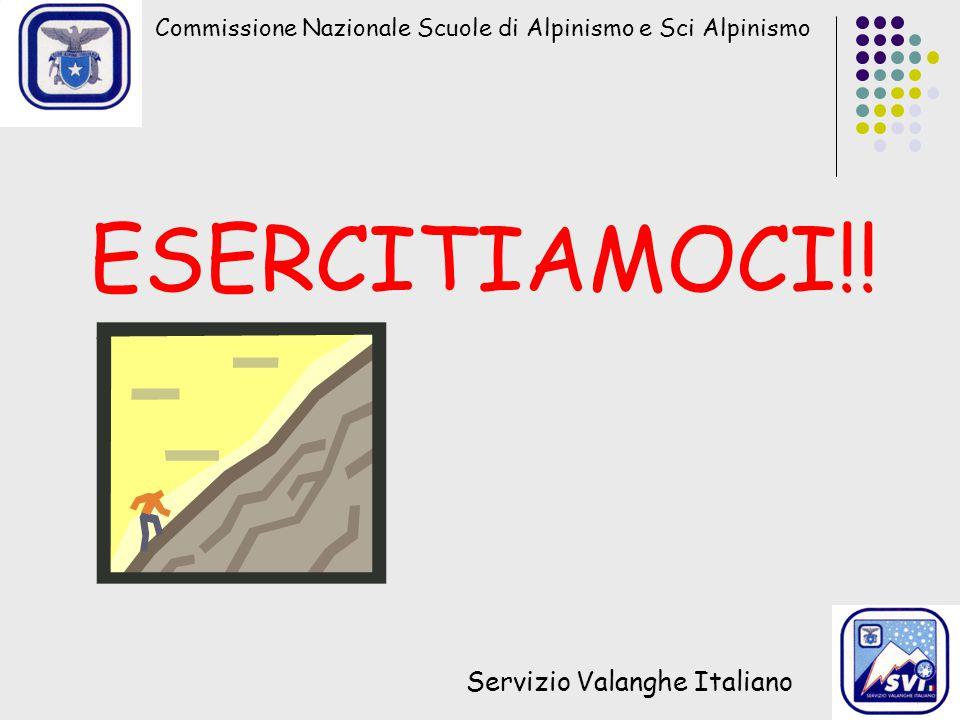 ESERCITIAMOCI!! Servizio Valanghe Italiano