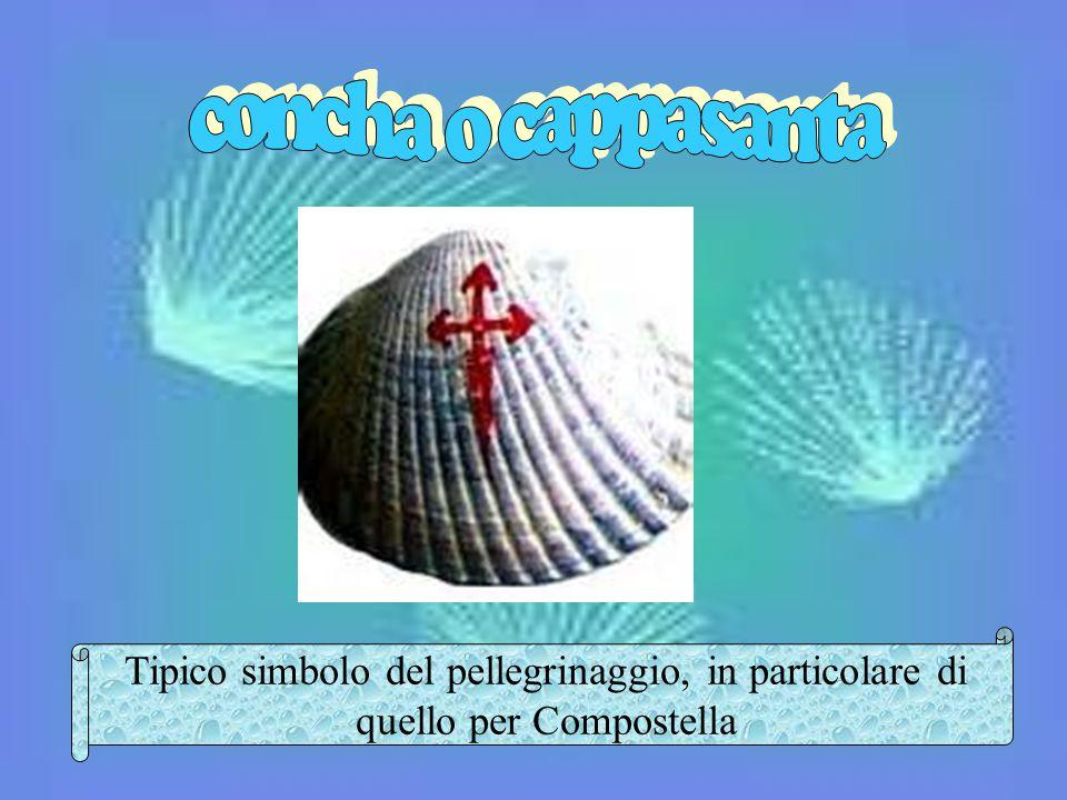 concha o cappasanta Tipico simbolo del pellegrinaggio, in particolare di quello per Compostella