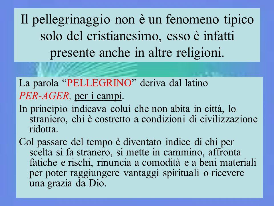 Il pellegrinaggio non è un fenomeno tipico solo del cristianesimo, esso è infatti presente anche in altre religioni.