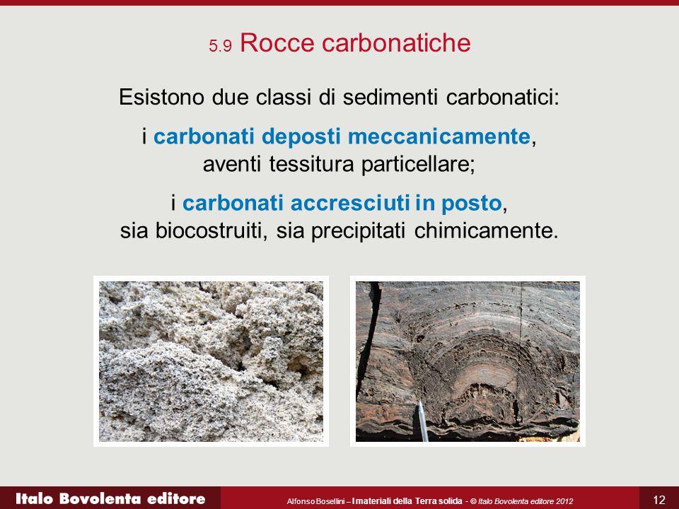 Esistono due classi di sedimenti carbonatici:
