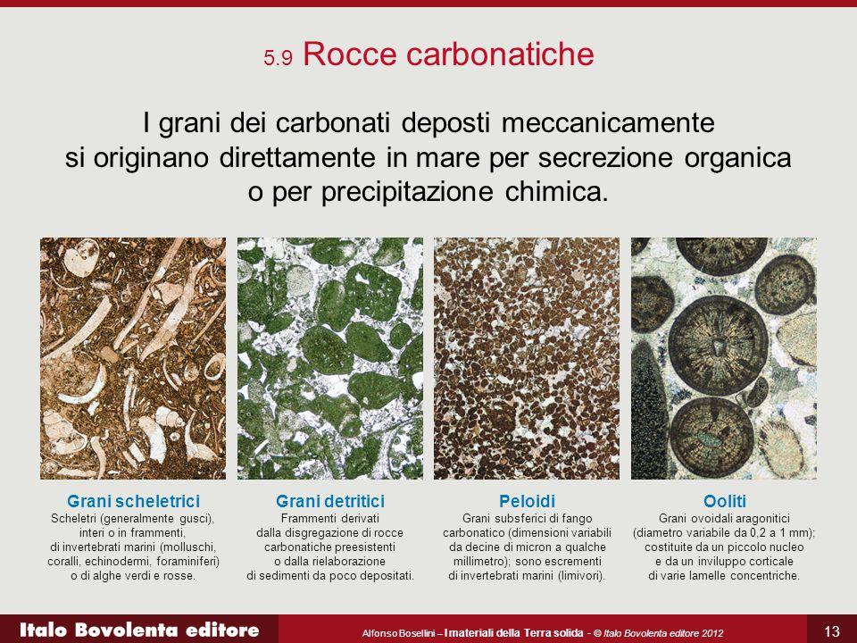 5.9 Rocce carbonatiche