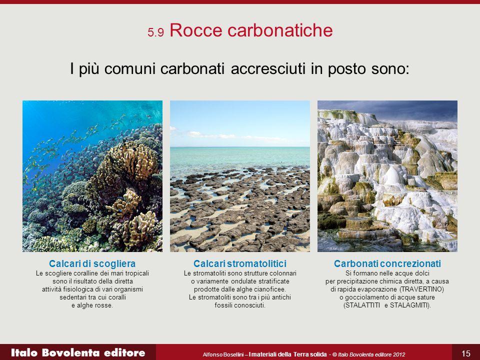 I più comuni carbonati accresciuti in posto sono: