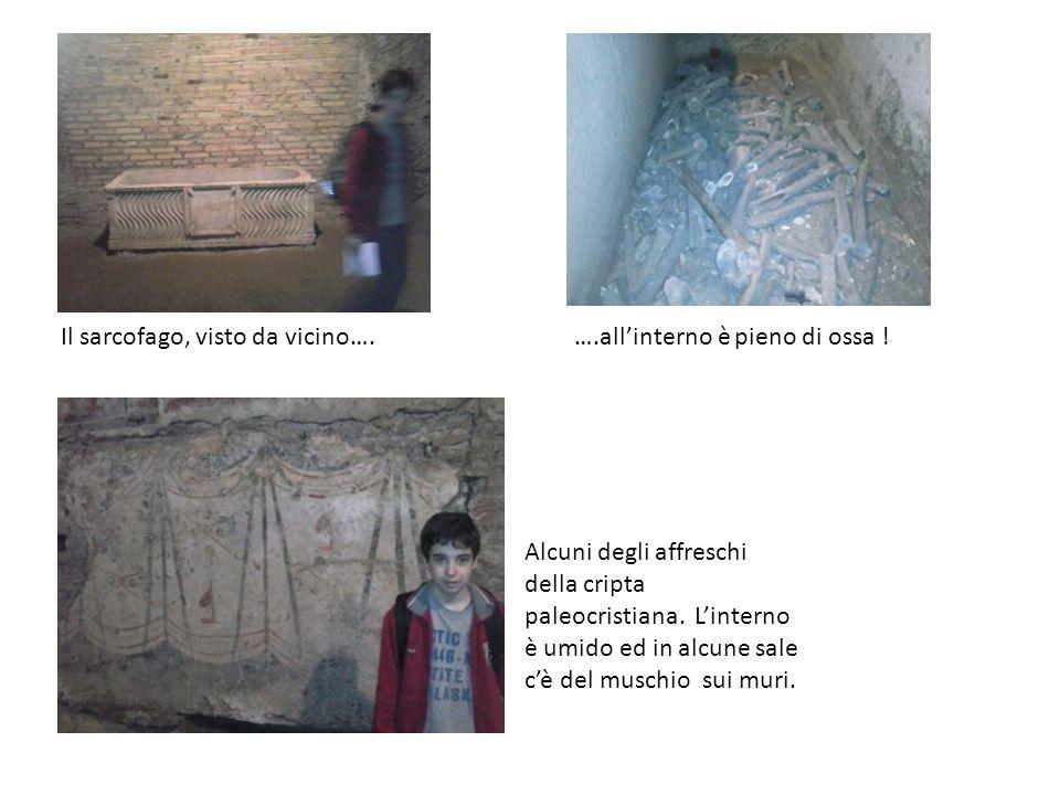 Il sarcofago, visto da vicino….