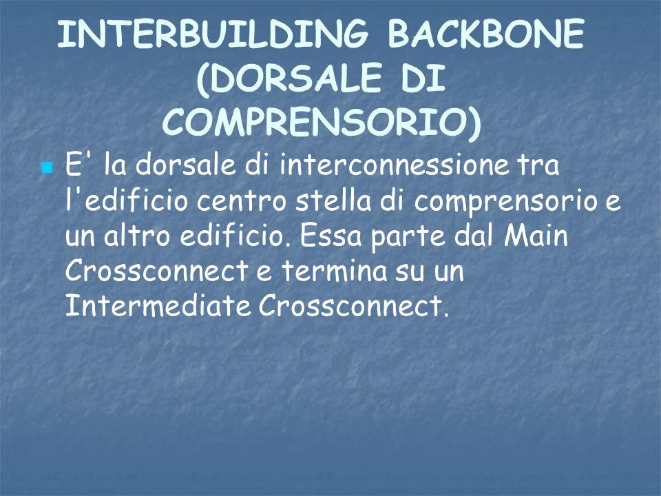 INTERBUILDING BACKBONE (DORSALE DI COMPRENSORIO)