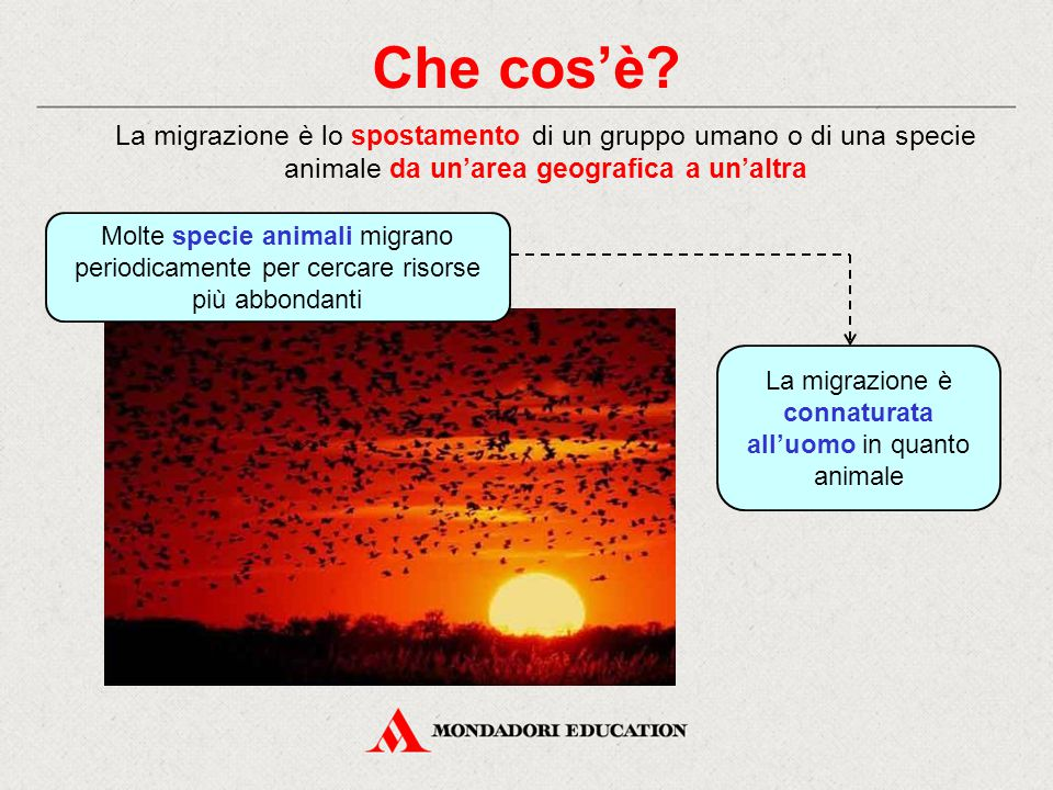 La migrazione è connaturata all'uomo in quanto animale