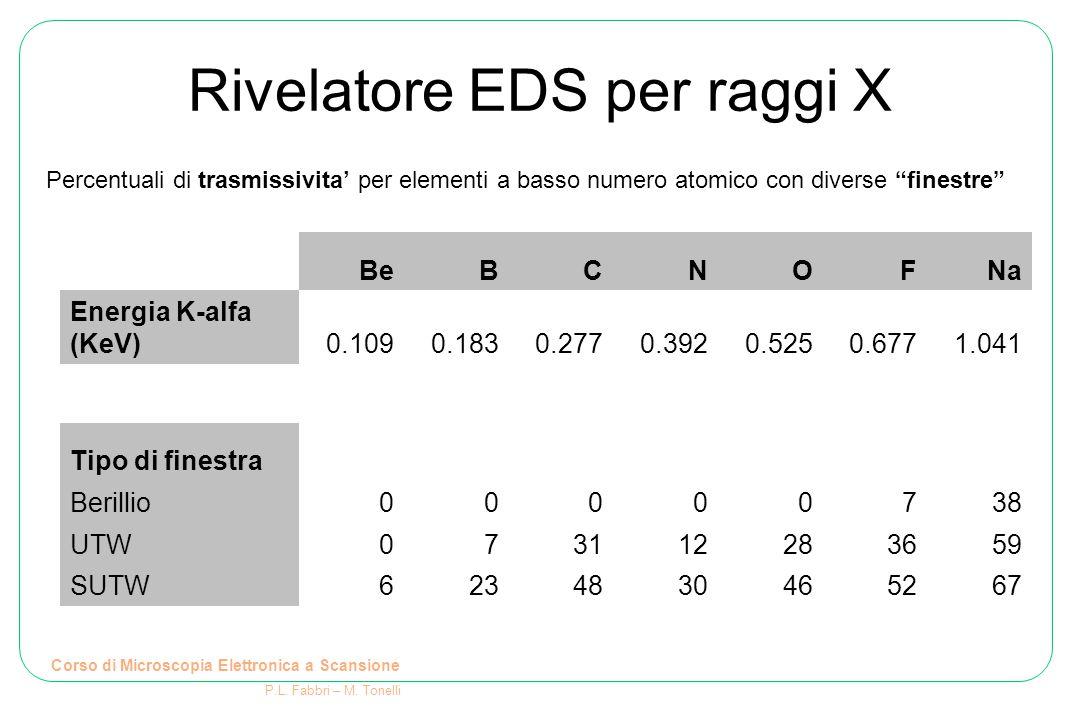 Rivelatore EDS per raggi X