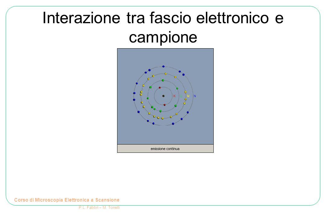 Interazione tra fascio elettronico e campione