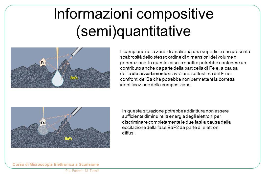 Informazioni compositive (semi)quantitative