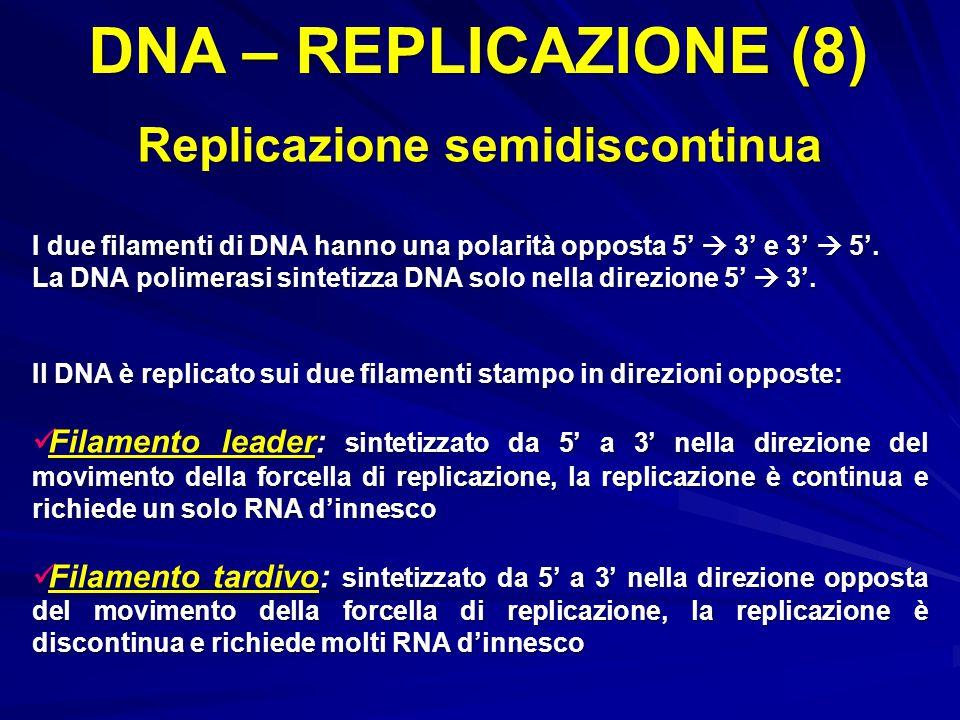 Replicazione semidiscontinua