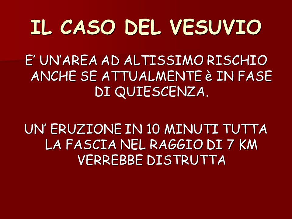 IL CASO DEL VESUVIO E' UN'AREA AD ALTISSIMO RISCHIO ANCHE SE ATTUALMENTE è IN FASE DI QUIESCENZA.