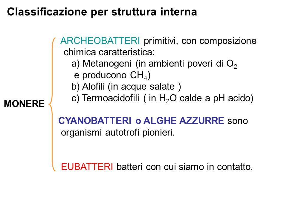 Classificazione per struttura interna