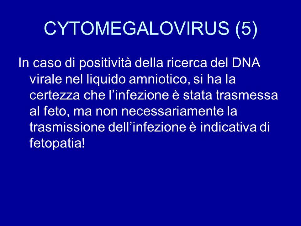 CYTOMEGALOVIRUS (5)