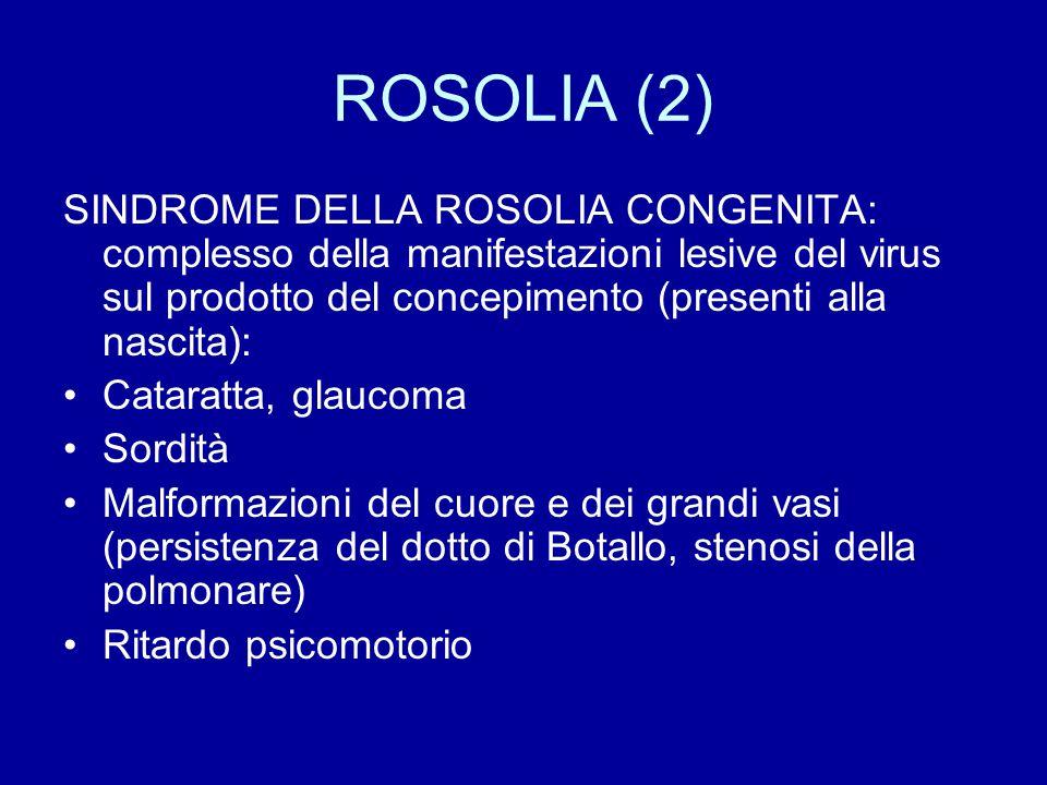 ROSOLIA (2) SINDROME DELLA ROSOLIA CONGENITA: complesso della manifestazioni lesive del virus sul prodotto del concepimento (presenti alla nascita):