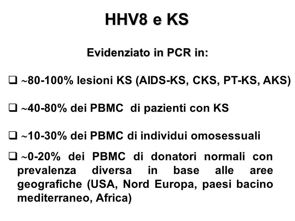 HHV8 e KS Evidenziato in PCR in: