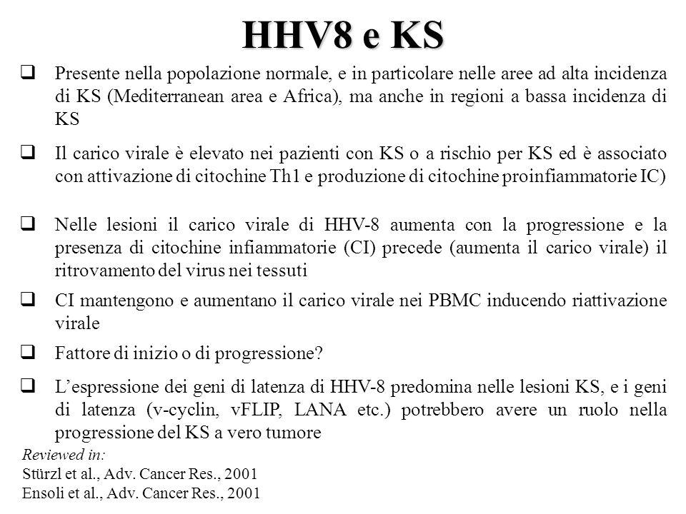 HHV8 e KS