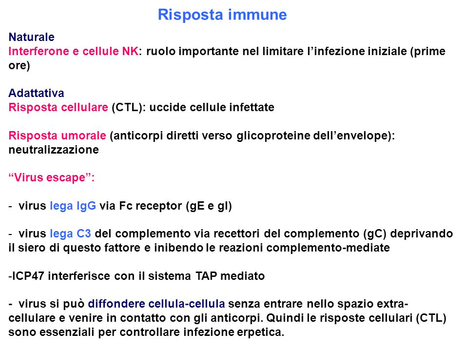 Risposta immune Naturale