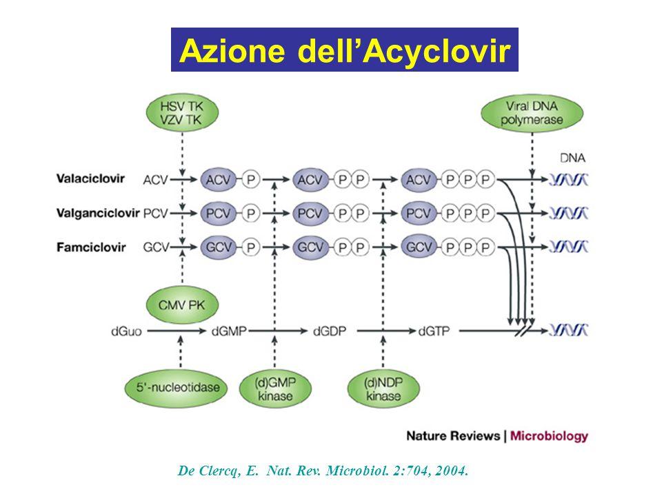Azione dell'Acyclovir