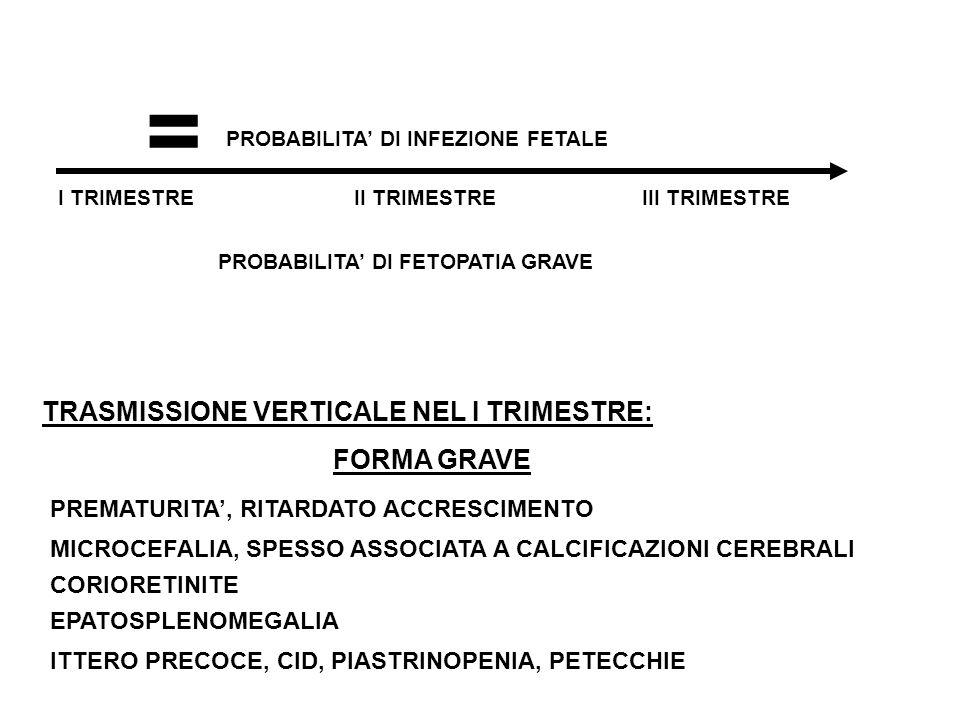 = TRASMISSIONE VERTICALE NEL I TRIMESTRE: FORMA GRAVE