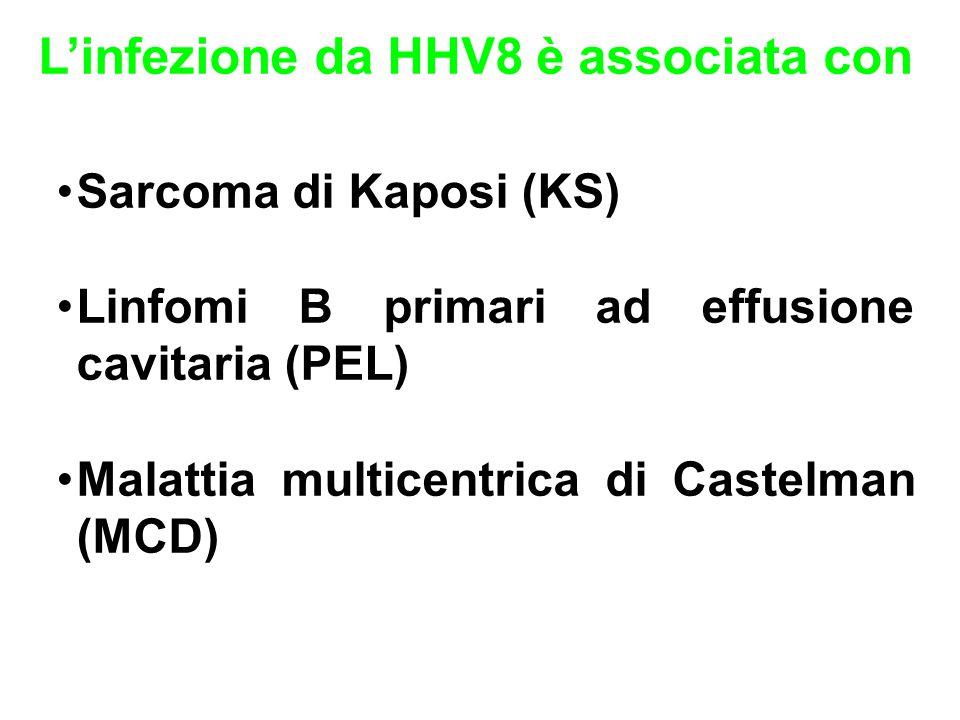 L'infezione da HHV8 è associata con