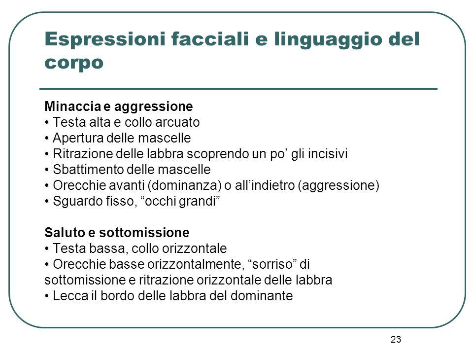 Espressioni facciali e linguaggio del corpo