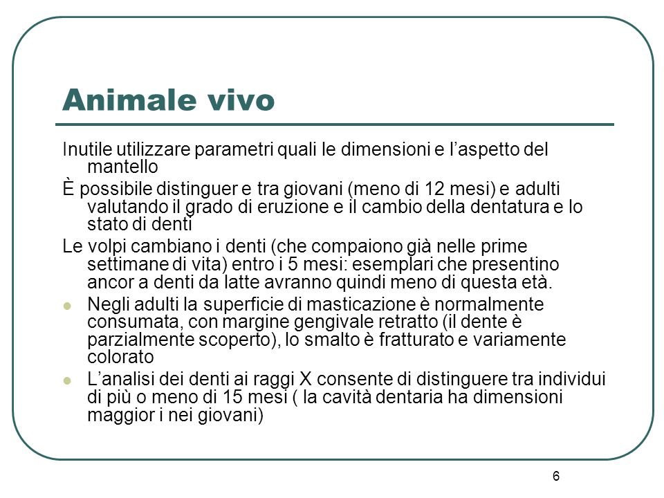 Animale vivo Inutile utilizzare parametri quali le dimensioni e l'aspetto del mantello.
