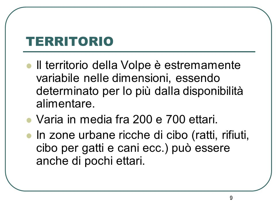 TERRITORIO Il territorio della Volpe è estremamente variabile nelle dimensioni, essendo determinato per lo più dalla disponibilità alimentare.