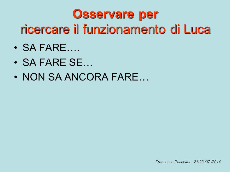 Osservare per ricercare il funzionamento di Luca