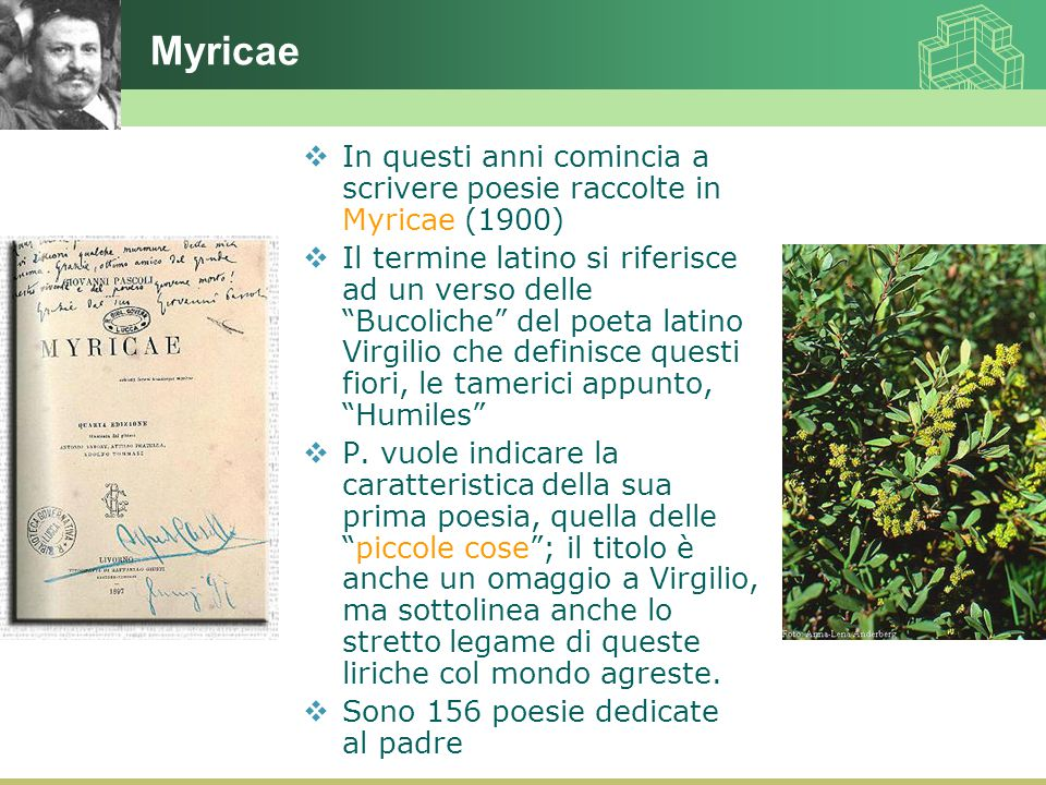 Myricae In questi anni comincia a scrivere poesie raccolte in Myricae (1900)