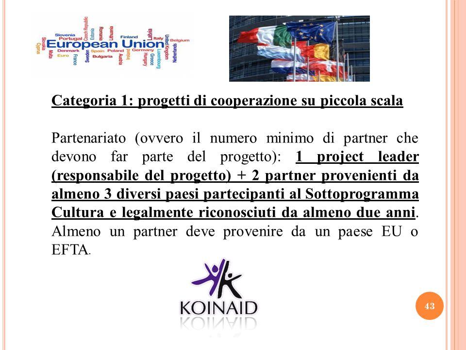 Categoria 1: progetti di cooperazione su piccola scala