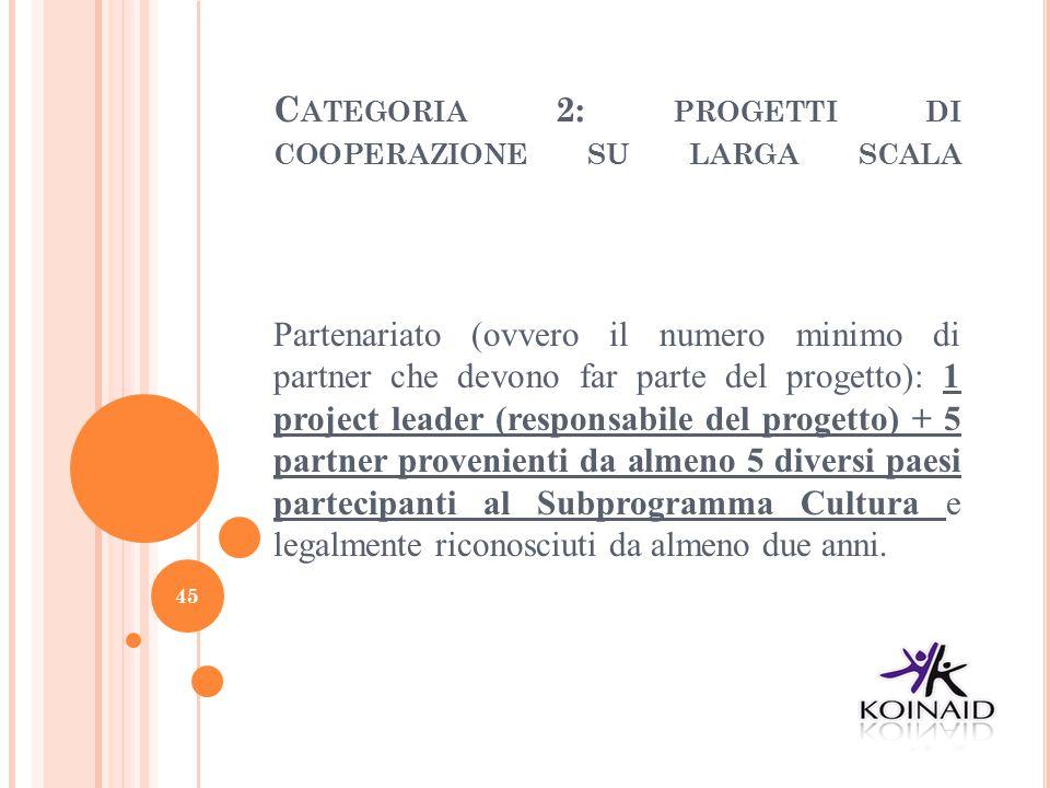 Categoria 2: progetti di cooperazione su larga scala