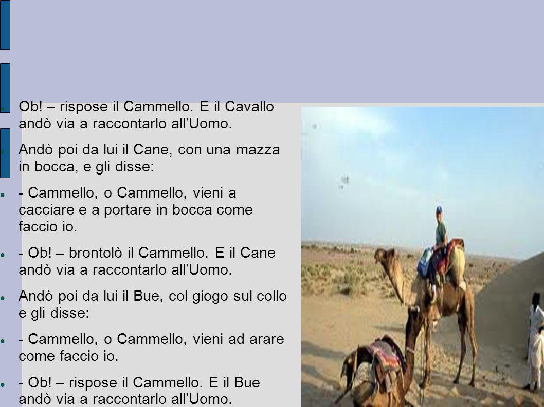 Ob! – rispose il Cammello. E il Cavallo andò via a raccontarlo all'Uomo.
