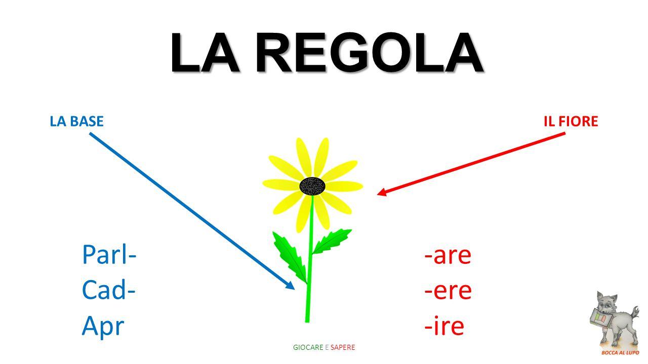 LA REGOLA Parl- Cad- Apr -are -ere -ire LA BASE IL FIORE