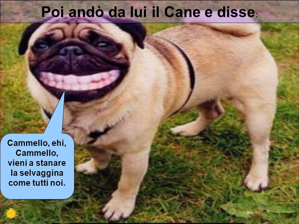 Poi andò da lui il Cane e disse: