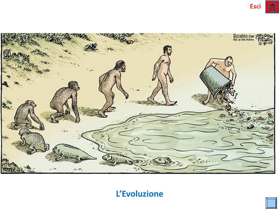 Esci L'Evoluzione