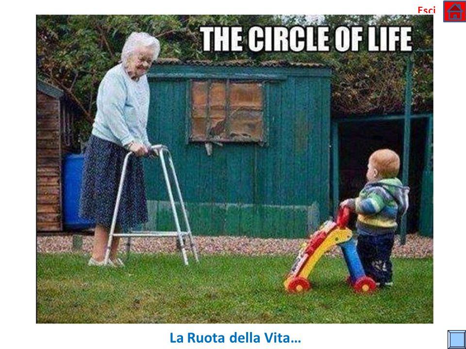 Esci La Ruota della Vita…