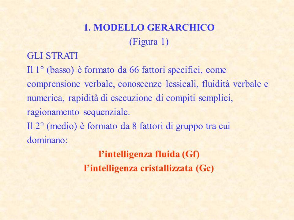 l'intelligenza fluida (Gf) l'intelligenza cristallizzata (Gc)