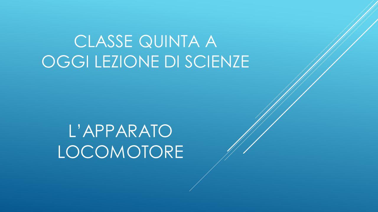 Classe quinta a OGGI LEZIONE DI SCIENZE