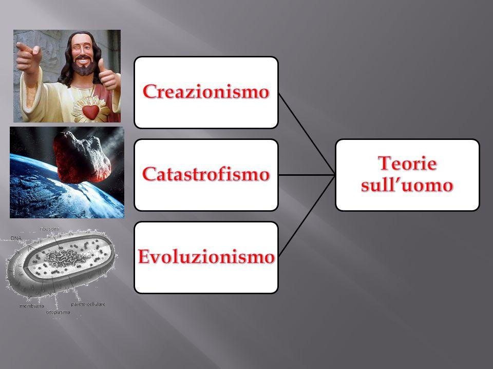 Teorie sull'uomo Creazionismo Catastrofismo Evoluzionismo