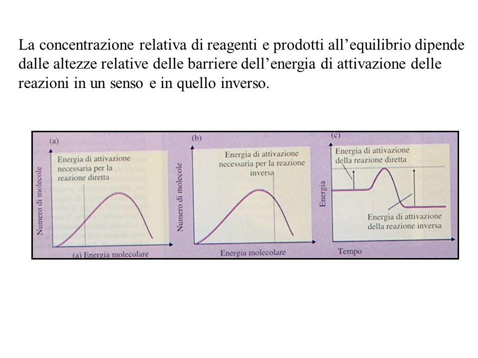 La concentrazione relativa di reagenti e prodotti all'equilibrio dipende