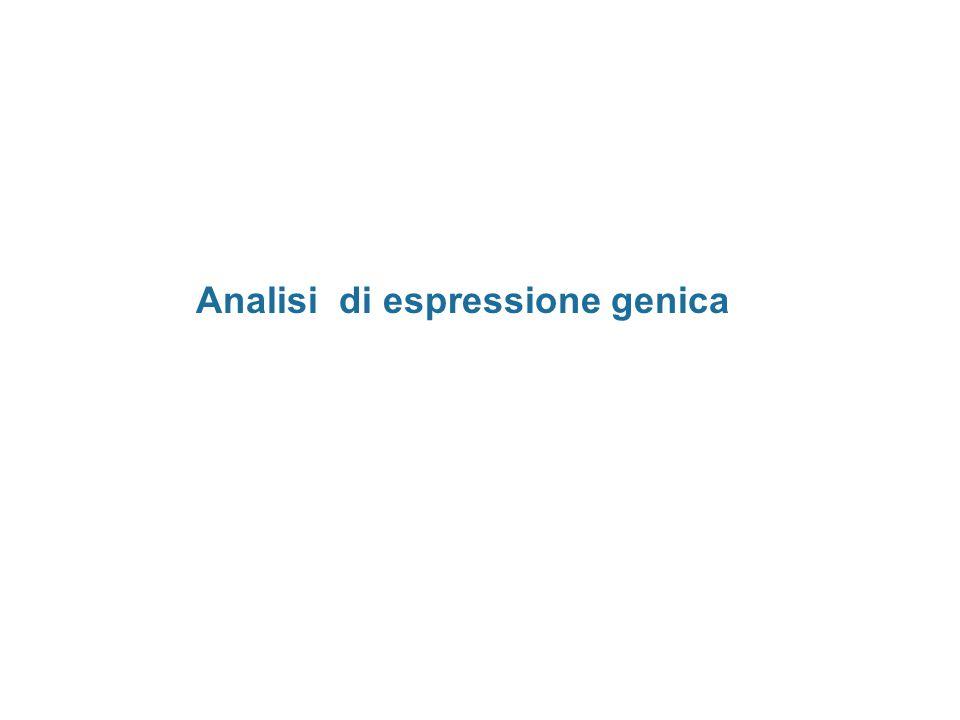 Analisi di espressione genica