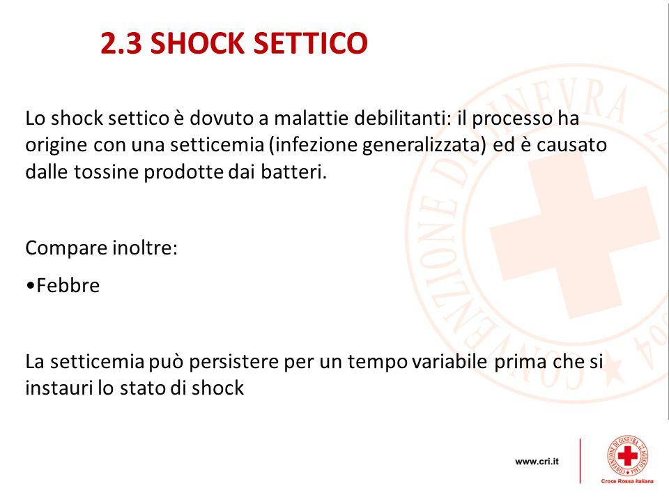 2.3 SHOCK SETTICO