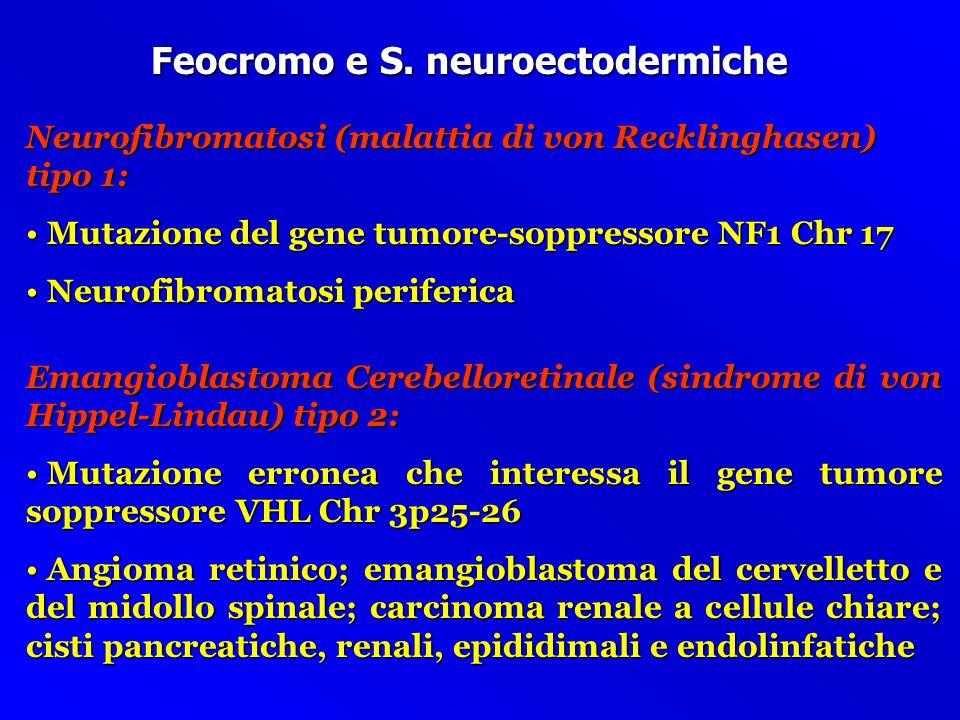 Feocromo e S. neuroectodermiche