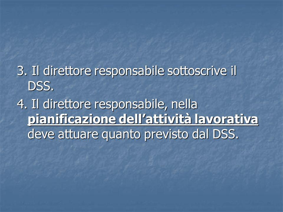 3. Il direttore responsabile sottoscrive il DSS.