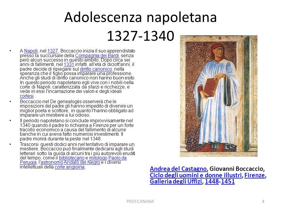 Adolescenza napoletana 1327-1340